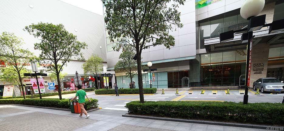 大宁国际广场绿化养护工程